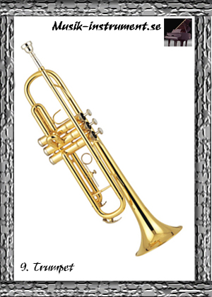 Trumpet